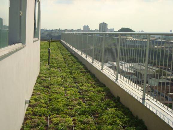 Telhado verde na arquitetura