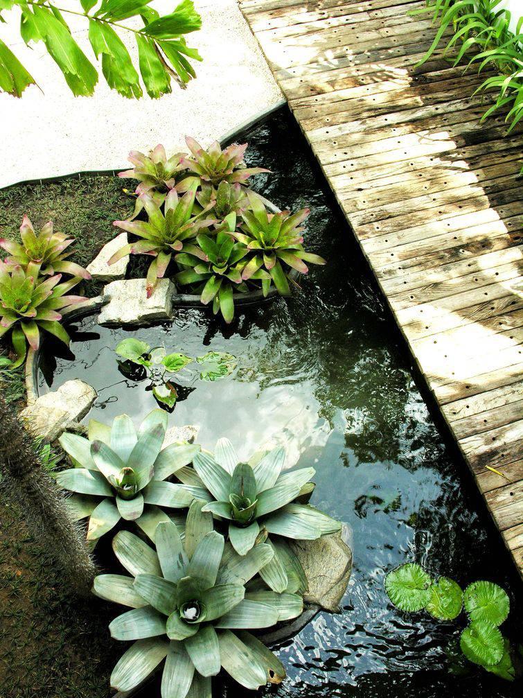 12812-jardim-projetos-diversos-alexandre-freitas-dos-santos-viva-decora