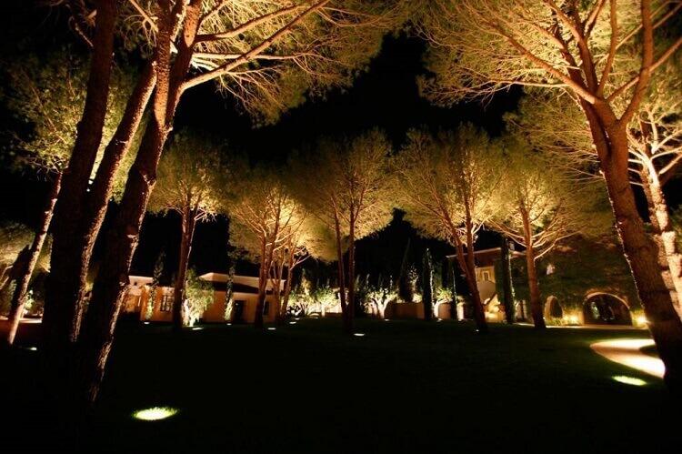 grande jardim com iluminação