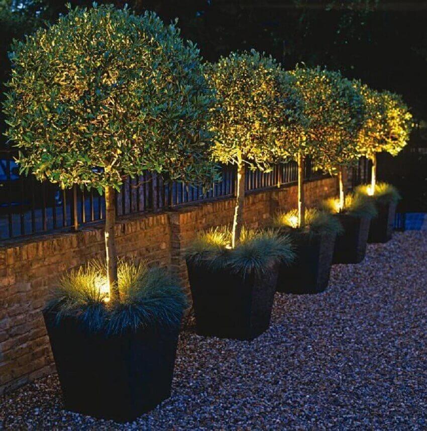 iluminação de jardim embutidas em vasos