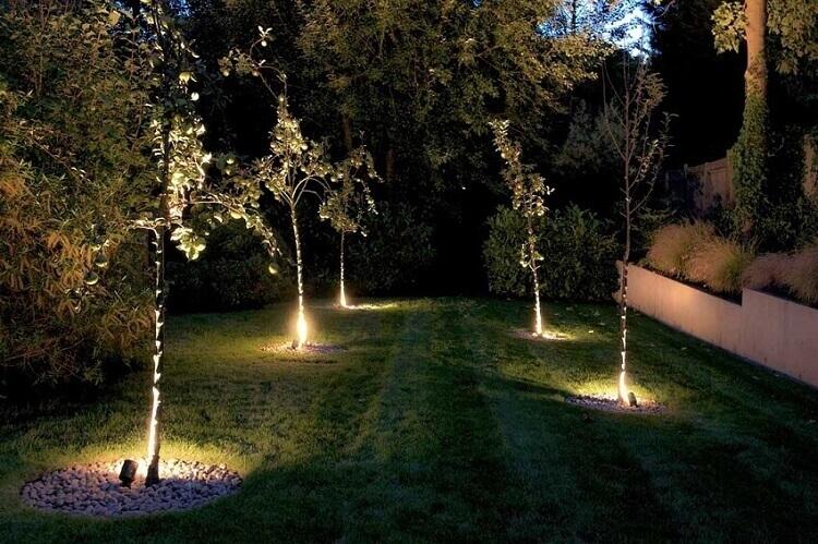 iluminação para jardim com iluminação direcionada