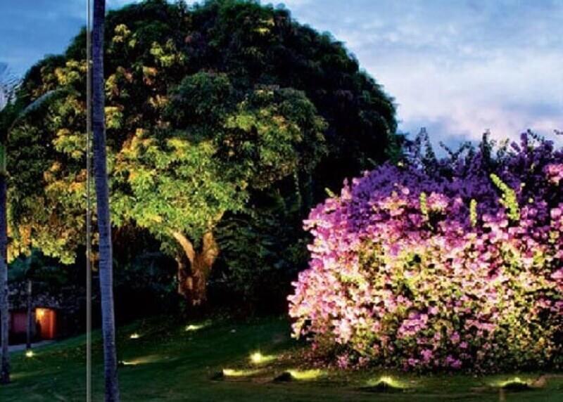 jardim com iluminação direcionada