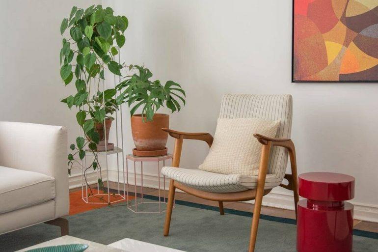 Plantas para apartamento - sala com cadeira de madeira e vasos de plantas - Viviane Gobbato