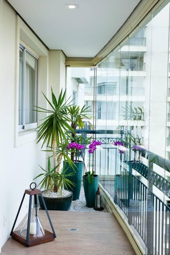 flores para jardim internoFlores de jardim para ambientar espaços