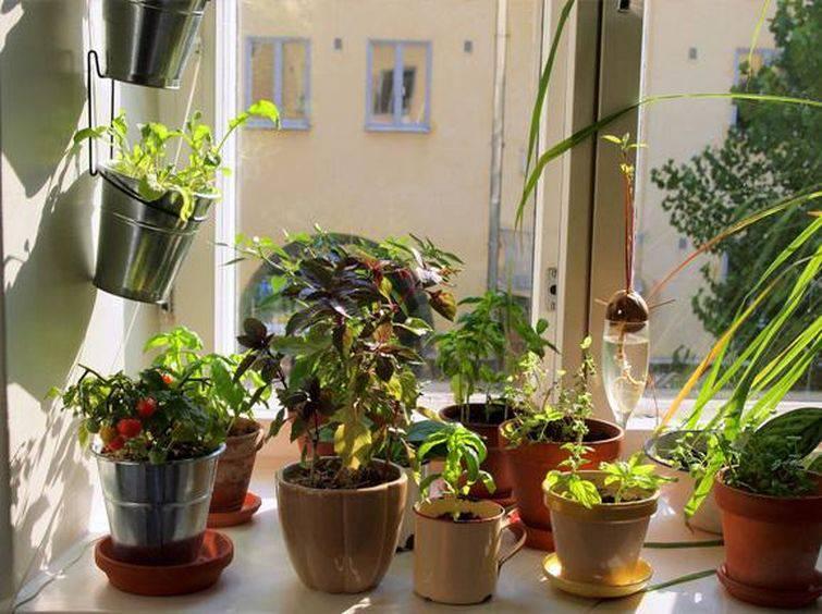 Vasos de jardim para a decoração verde da sua casa