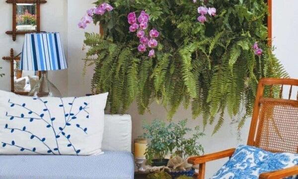 Como cuidar de orquídea painel verde