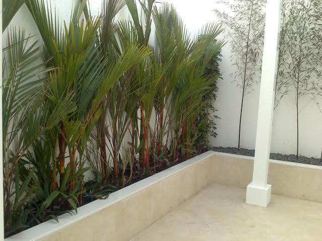 Como decorar jardins de inverno dentro da sua casa