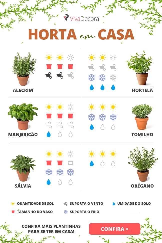 Infográfico - Horta em casa