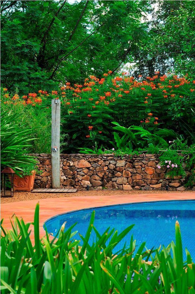 Piscinas pequenas 7 dicas para dar um show 97 exemplos for Plantas para piscinas