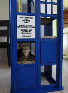 decoração geek doctor who