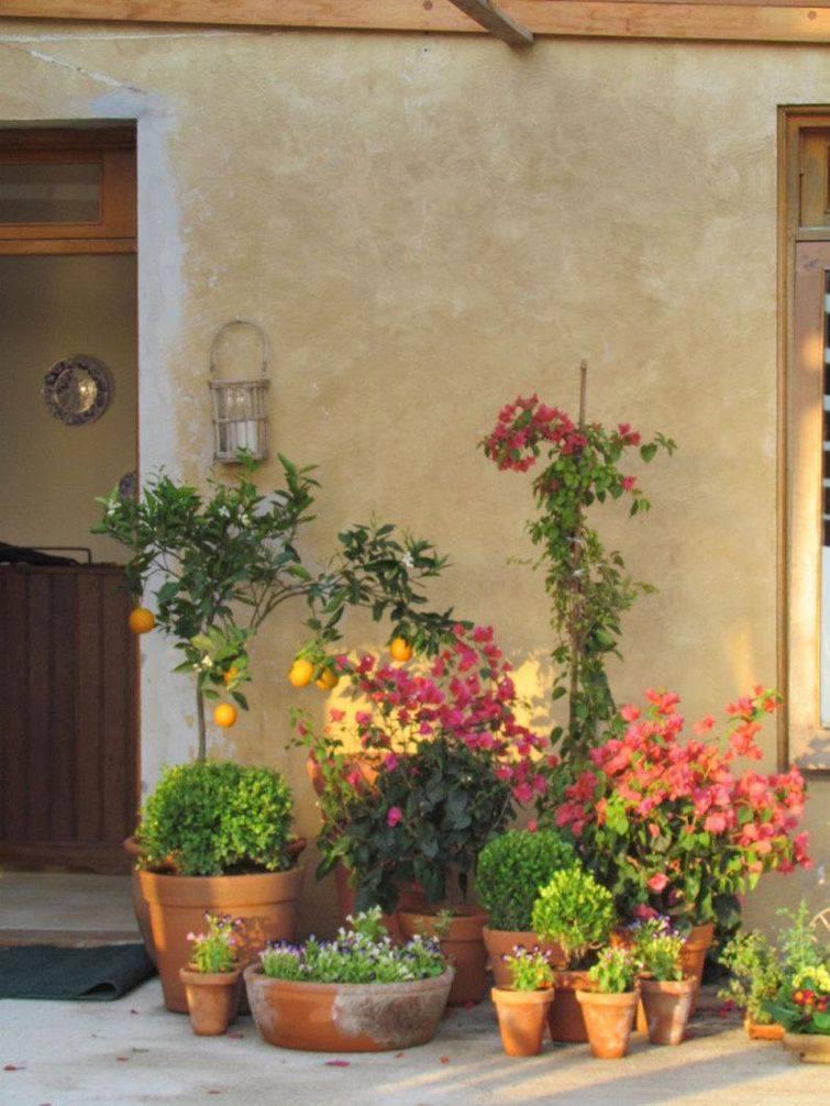 72871-jardim-restaurante-adriana-giacometti-viva-decora