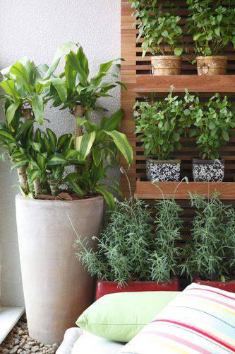 25595- jardim pequeno -juliana-freitas-viva-decora