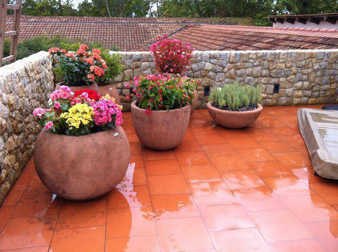 30450- jardim pequeno -eder-mattiolli-viva-decora