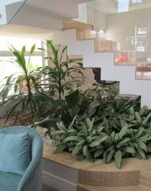 30424- jardim de inverno na sala -eder-mattiolli-viva-decora