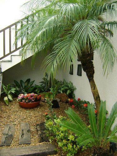 96905- jardim de inverno na sala -mc3-arquitetura-viva-decora