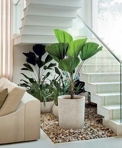 Jardim de inverno na sala clean