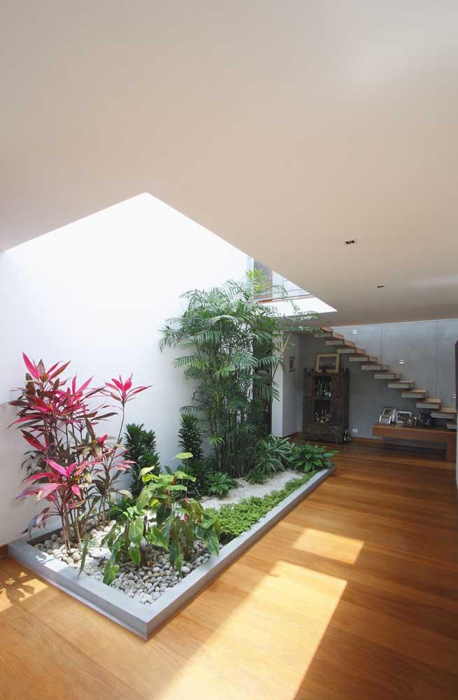 Jardim de inverno na sala com canteiro de plantas