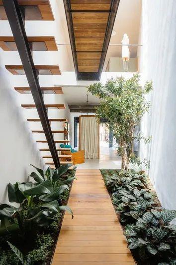Jardim de inverno na sala com plantas charmosas