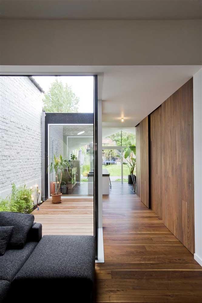 Jardim de inverno na sala com plantas
