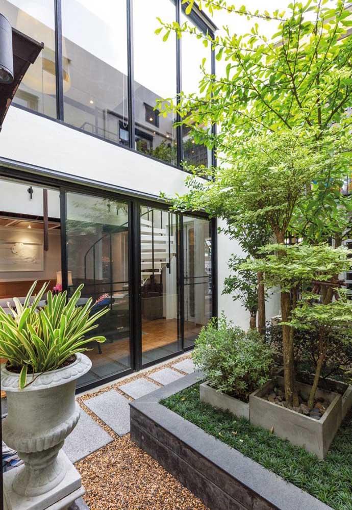 Jardim de inverno na sala com plantas modernas