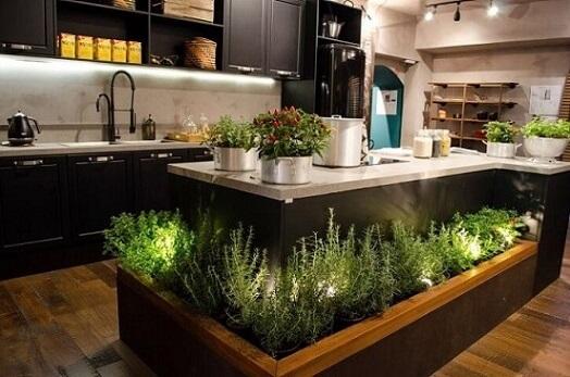 Horta em casa na ilha da cozinha Projeto de Casa Cor SP 2017