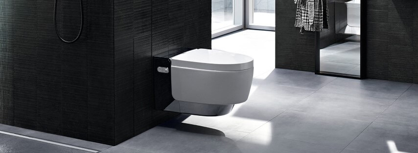 Cerâmica para banheiro cinza com revestimento preto na parede