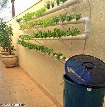 Horta vertical em cano de PVC na parede Foto de Baú das Dicas
