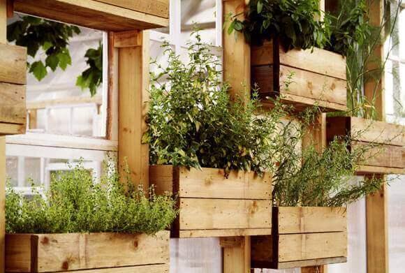 Horta vertical em estrutura de madeira com pequenos caixotes Foto de Harrubana
