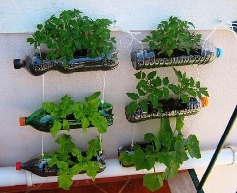 Horta vertical em garrafas PET Foto de Garden Decors