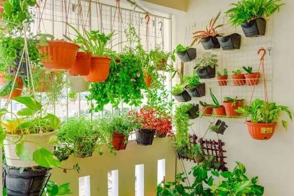 Horta vertical em várias estruturas na sacada Foto de Pinterest