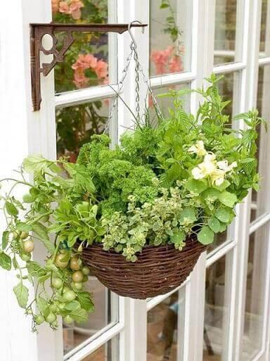 Horta vertical em vaso preso em uma mão francesa Foto de Pinterest