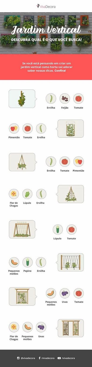 Infográfico plantas para horta vertical