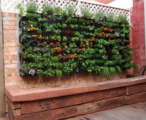 horta vertical com plantas coloridas