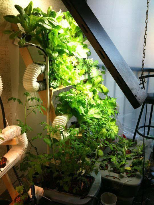 horta vertical com tubulações e madeira