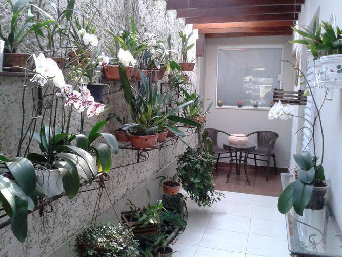 42657 jardim de casa helio okamoto