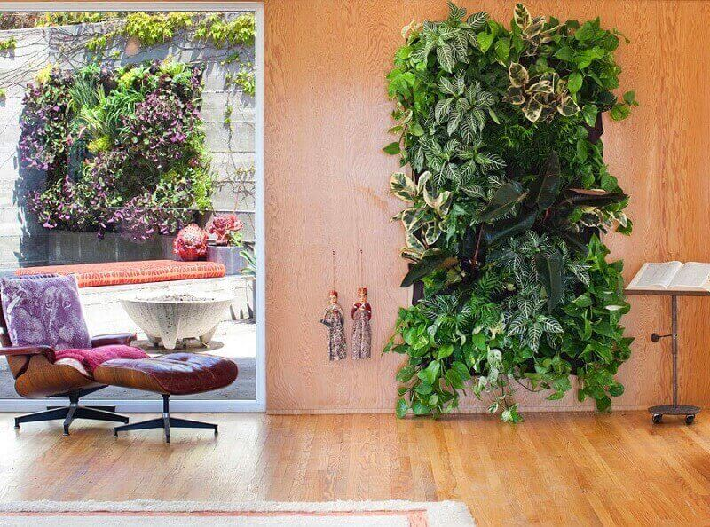 decoração com parede viva