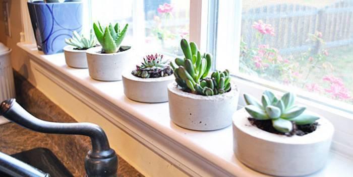 decoração com vasos