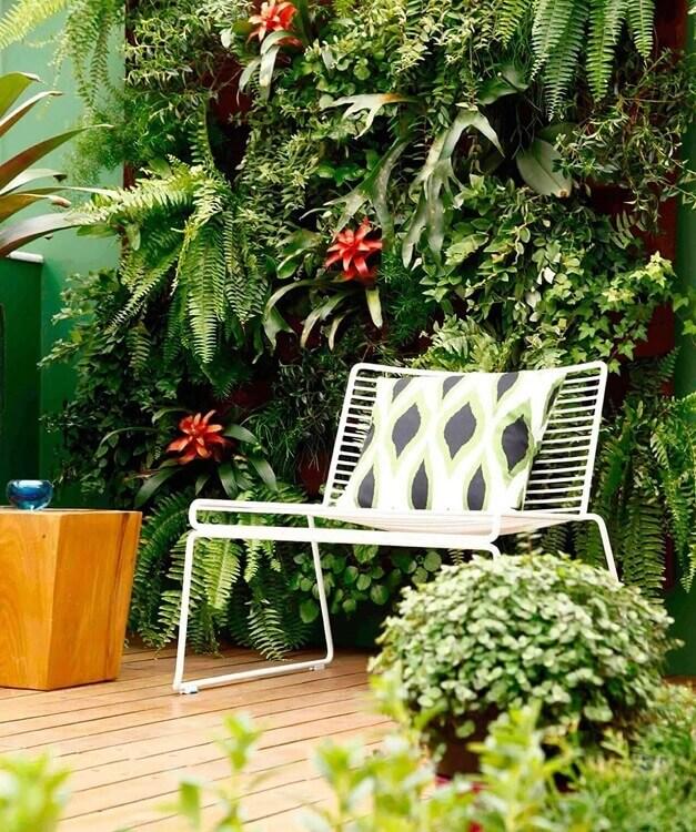 Decoração de jardim com jardim vertical