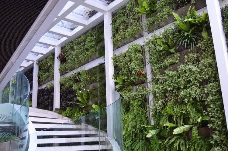 Paisagismo com jardim vertical