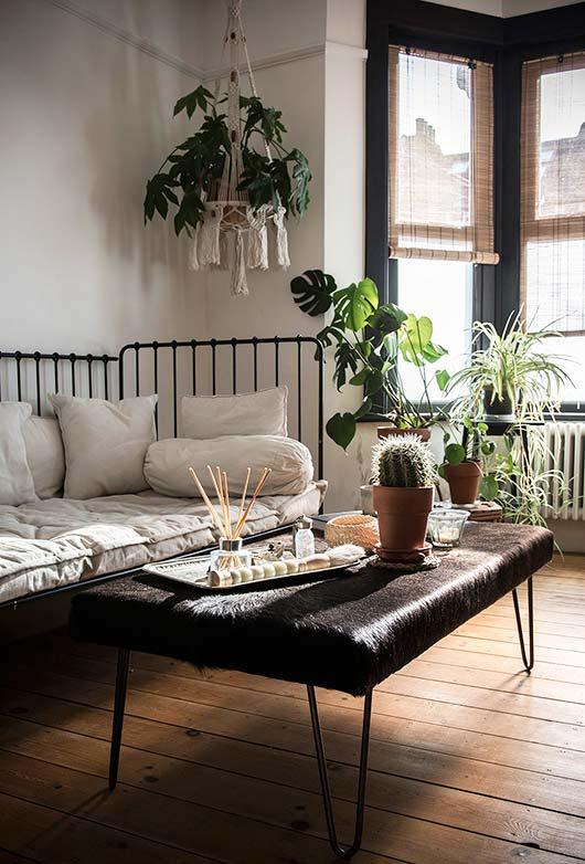 Persianas para sala de estar moderna com cactos