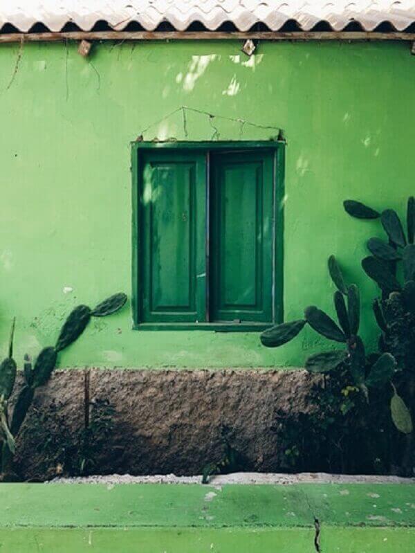 Cactos na decoração de frente de casa