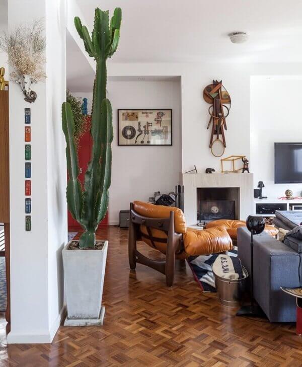 Cactos na sala