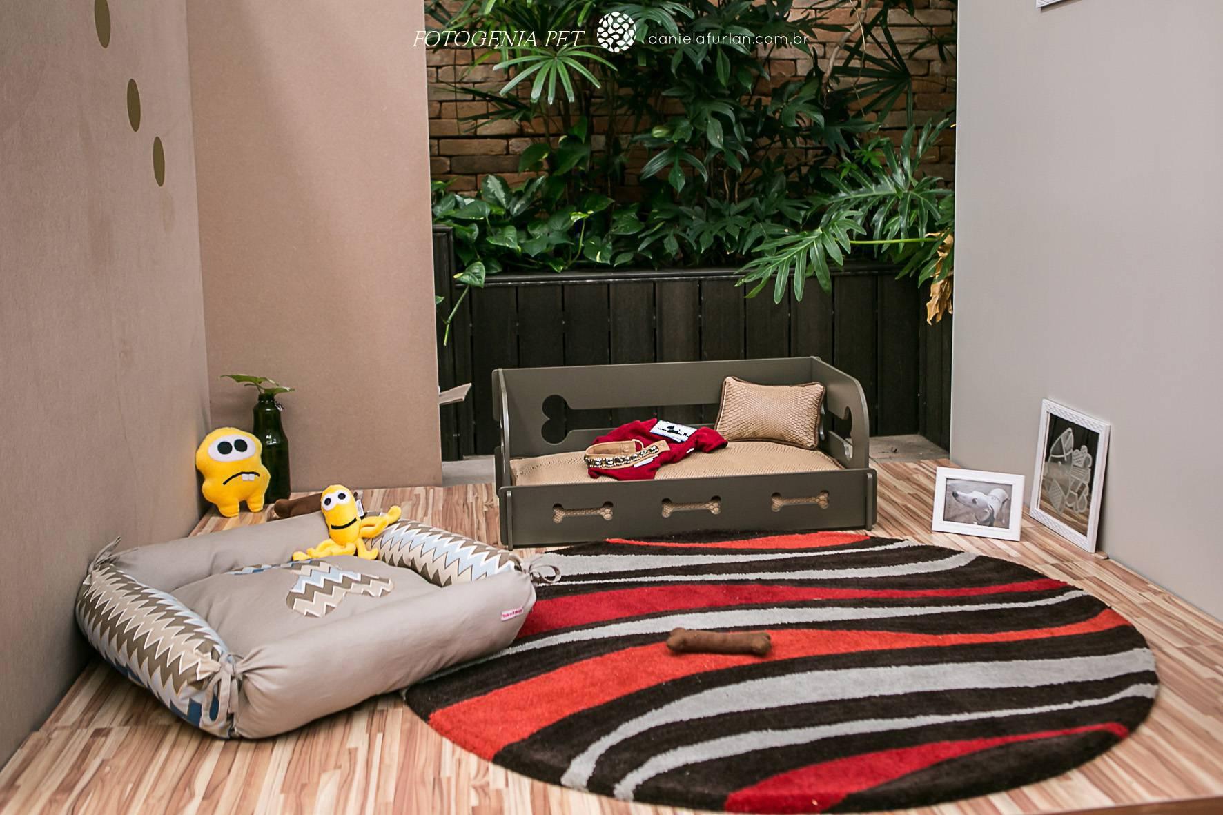 Decoração para pets - sala colorida