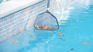 como limpar piscina peneira folhas