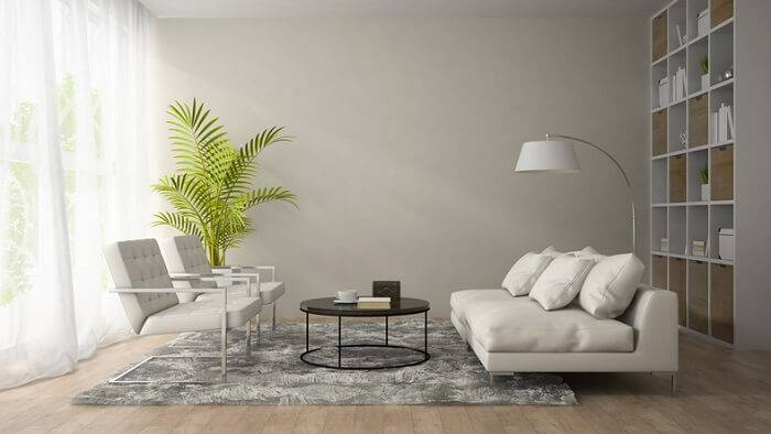 carpete de madeira sala de estar com planta