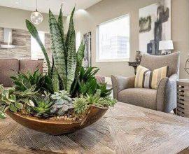 enfeite-de-mesa-com-plantas-foto-pinterest
