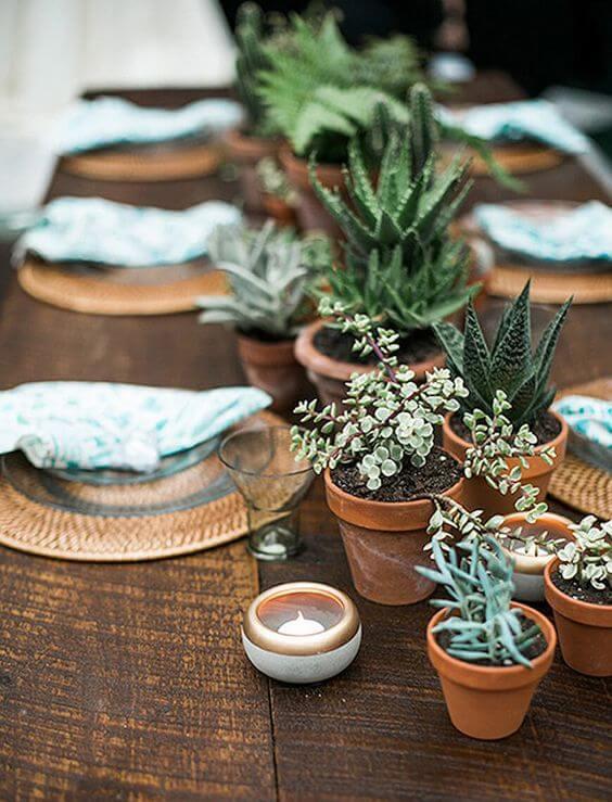 Enfeite de mesa com plantas de suculentas