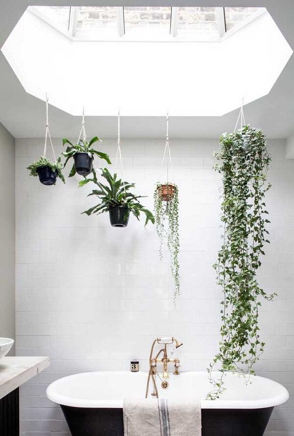 A claridade que entra favorece o cultivo do jardim suspenso sobre a banheira