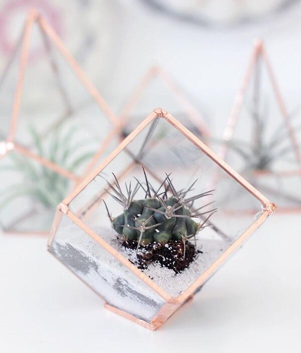 Cultive seu terrário em um recipiente em formato de prisma