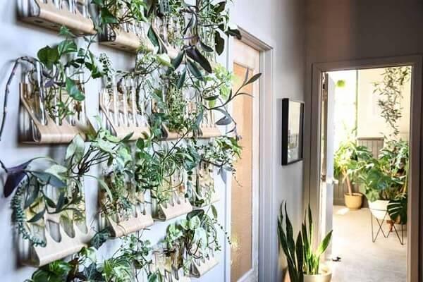 Jardim suspenso engenhoso feito onde as plantas ficam em tubos de ensaio